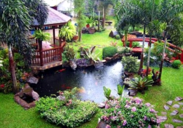 Ponds & Water Features…