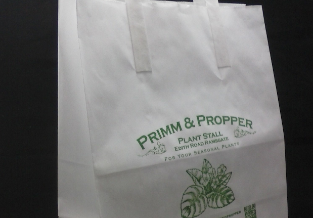 For A Budget Print Carrier Bag